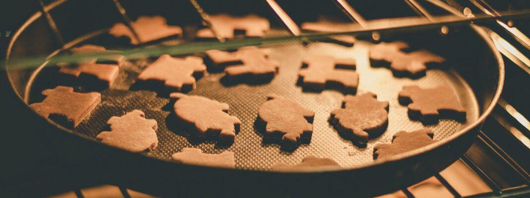miniovn med kogeplader